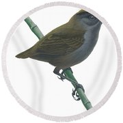 Wrenthrush Round Beach Towel