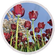 Round Beach Towel featuring the photograph 090416p029 by Arterra Picture Library