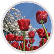 Round Beach Towel featuring the photograph 090416p031 by Arterra Picture Library