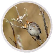 American Tree Sparrow Round Beach Towel