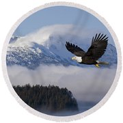 Bald Eagle In Flight Over The Inside Round Beach Towel