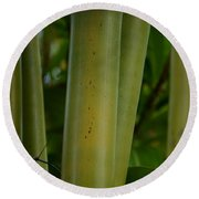 Round Beach Towel featuring the photograph Bamboo II by Robert Meanor