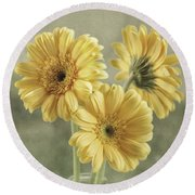 Round Beach Towel featuring the photograph Believe by Kim Hojnacki