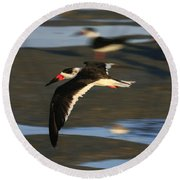 Black Skimmer Beach Round Beach Towel