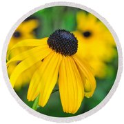 Blackeyed Susan Round Beach Towel