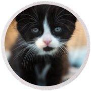 Black And White Kitten Round Beach Towel