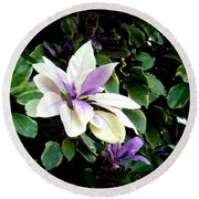 Round Beach Towel featuring the photograph Blossom At Sundy House by Donna Walsh