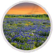 Bluebonnet Sunset  Round Beach Towel