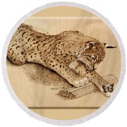 Bobcat And Friend Round Beach Towel by Ron Haist