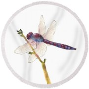 Burgundy Dragonfly  Round Beach Towel