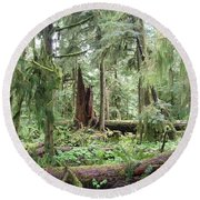 Round Beach Towel featuring the photograph Cathedral Grove by Marilyn Wilson