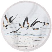 Coastal Skimmers Round Beach Towel by Scott Cameron
