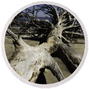 Driftwood Round Beach Towel by Fran Gallogly