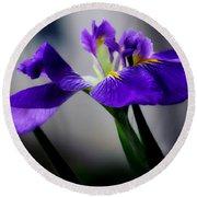 Elegant Iris Round Beach Towel