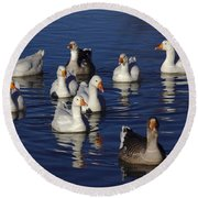 Family Goose Round Beach Towel