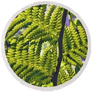 Fern Round Beach Towel
