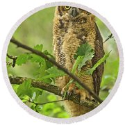Forest King Round Beach Towel