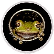 Round Beach Towel featuring the photograph Frog by Olga Hamilton