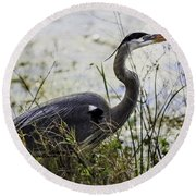 Great Blue Heron Round Beach Towel by Fran Gallogly