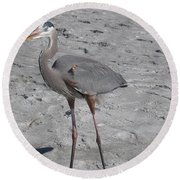 Round Beach Towel featuring the photograph Great Blue Heron On The Beach by Christiane Schulze Art And Photography