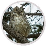 Round Beach Towel featuring the photograph Great Horned Owl by Michael Chatt