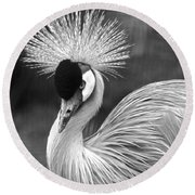 Grey Crowned Crane Round Beach Towel by Venetia Featherstone-Witty