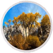 Round Beach Towel featuring the photograph Guardians by David Andersen