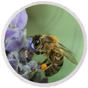 Round Beach Towel featuring the photograph Happy Bee by Joy Watson