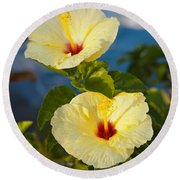 Round Beach Towel featuring the photograph Bright Yellow Hibiscus by Roselynne Broussard