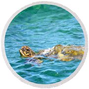 Honu Hawaiian Green Sea Turtle Round Beach Towel