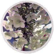 Round Beach Towel featuring the photograph Hydrangea  by Debra Forand