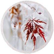 Icy Winter Leaf Round Beach Towel