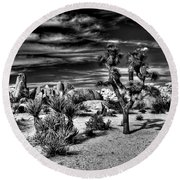 Round Beach Towel featuring the photograph Joshua Tree Black And White by Benjamin Yeager