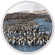 King Penguins Aptenodytes Patagonicus Round Beach Towel