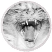 Laughing Cat Round Beach Towel by Jeannette Hunt