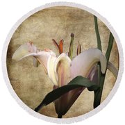 1 Lily 1 Beauty Round Beach Towel by Irma BACKELANT GALLERIES