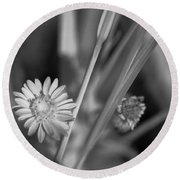 Round Beach Towel featuring the photograph Loxahatchee Flower by Bradley R Youngberg