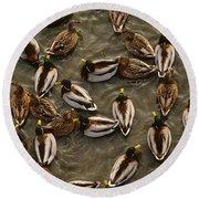Mallard Ducks Round Beach Towel
