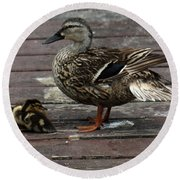 Mama Duck And Ducklings Round Beach Towel by Pamela Walton
