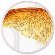 Maple Seed Pod Round Beach Towel