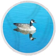 Round Beach Towel featuring the photograph Mirror Goose by Kerri Mortenson