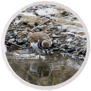 Mirror Mirror Round Beach Towel by Mike Dawson