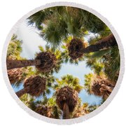 Native Desert Fan Palms Round Beach Towel