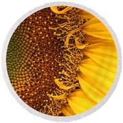 O Sunflower Round Beach Towel by Jeanette French