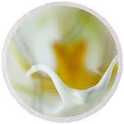 Moth Orchid Macro Round Beach Towel