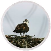 Osprey Nesting Round Beach Towel
