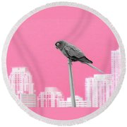 Round Beach Towel featuring the photograph Parrot by J Anthony