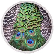 Round Beach Towel featuring the photograph Peacock Plumage  by Jim Fitzpatrick