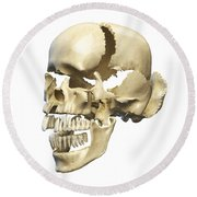 Perspective View Of Human Skull Round Beach Towel