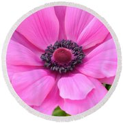 Round Beach Towel featuring the photograph Pink Flower by Jeannie Rhode